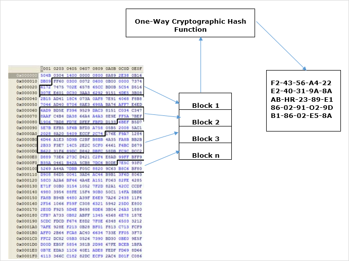 What is Polymorphic Malware? An Overview