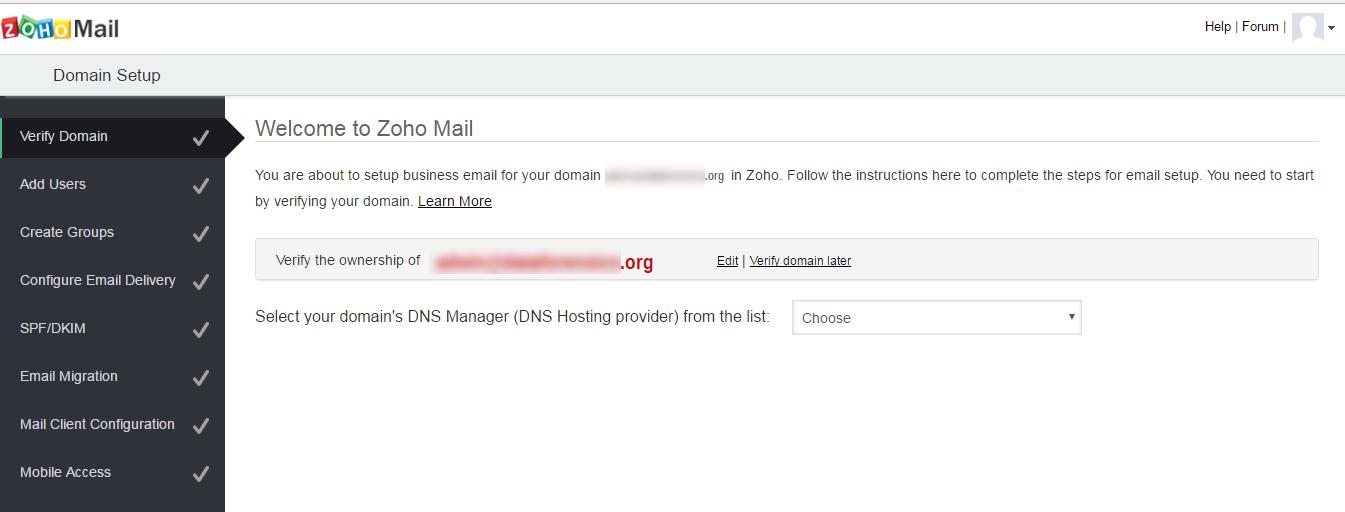 Domain ownership verification setup